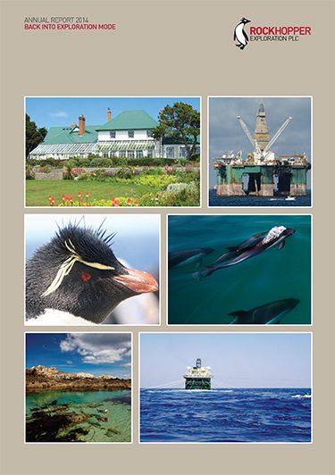 RKH Annual Report 2014